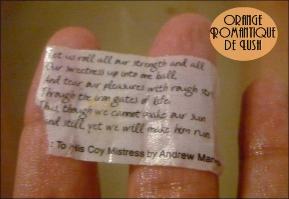 http://les-trouvailles-d-anaya.cowblog.fr/images/Anaya3/Orangeromantique4.jpg