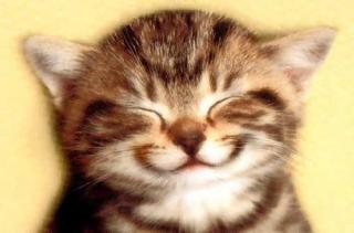 http://les-trouvailles-d-anaya.cowblog.fr/images/sourire.jpg